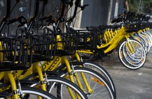 یلو استارتاپ به اشتراک گذاری دوچرخه و اسکوتر