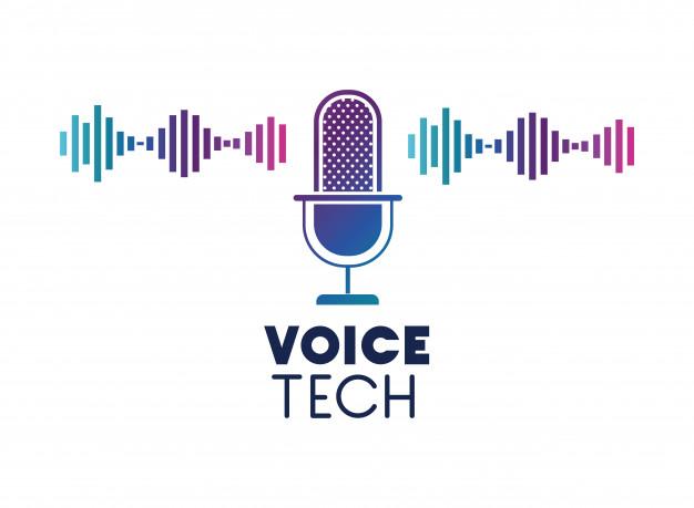 تامین سرمایه سرمایه گذاری خطرپذیر در تکنولوژی صوتی